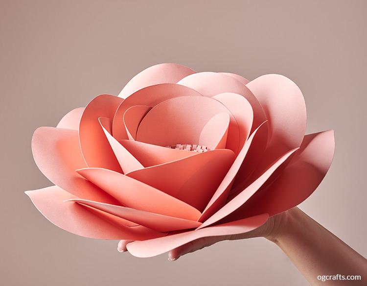 Handmade giant paper flowers rose