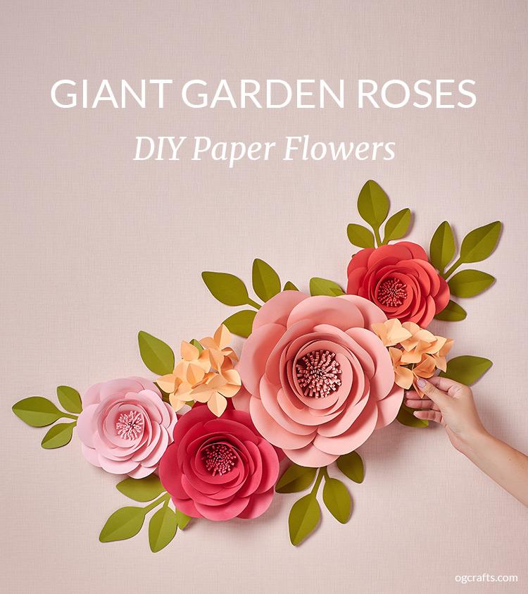 giant paper flowers - garden rose
